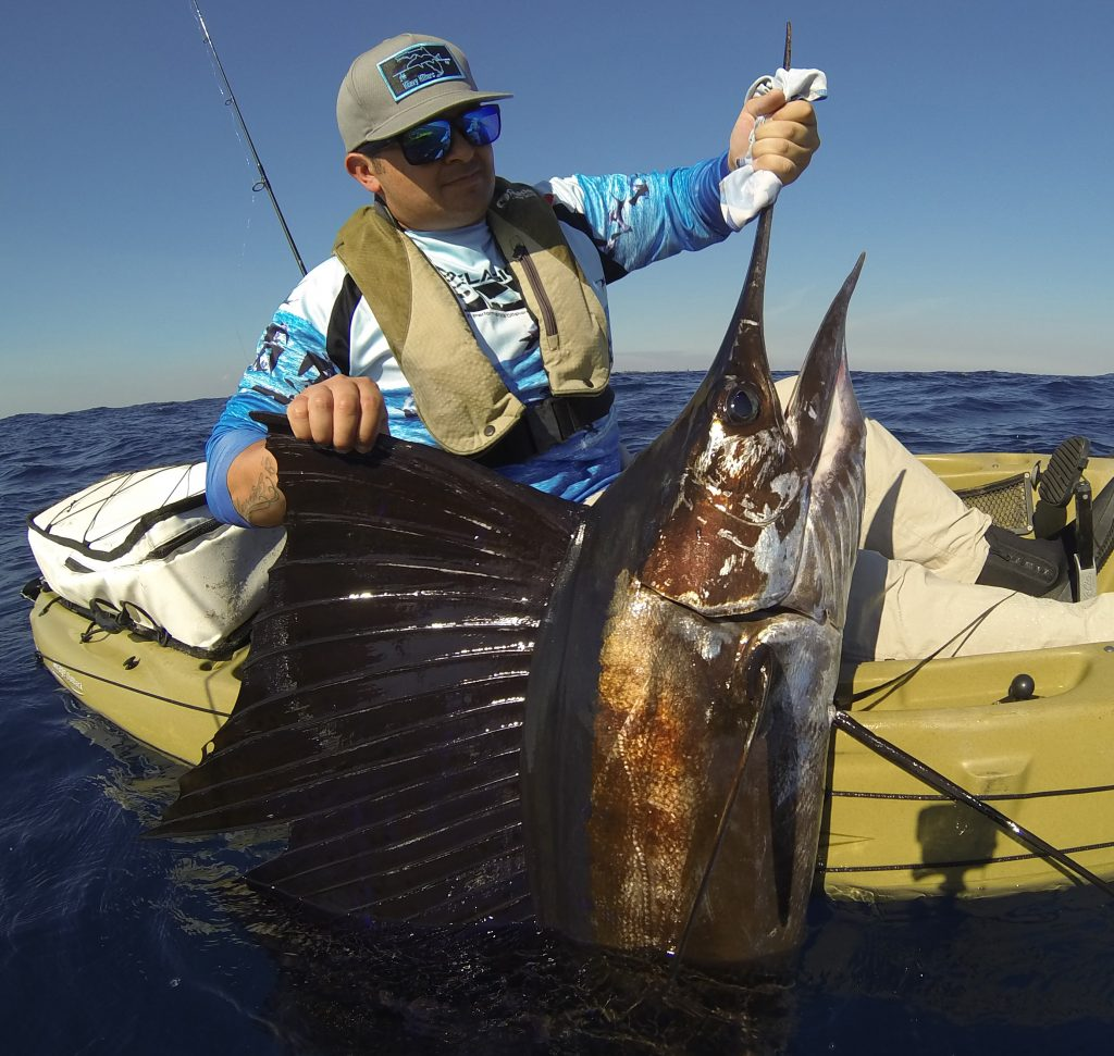 offshore kayak fishing sailfish